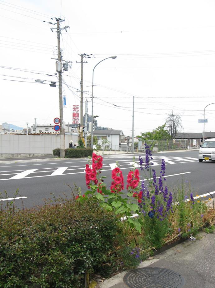 Shitamachiseaside_002_2